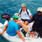 Caribbean Boat Cuisine