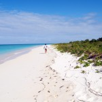 Tobago Cays Caribbean