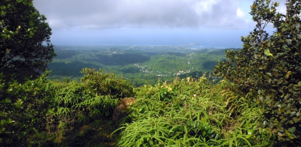 Disover Grenada and the Grenadines