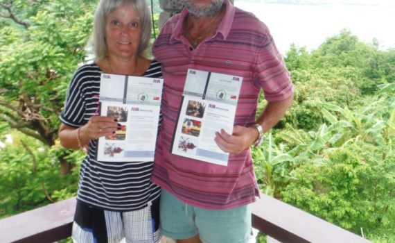 Sailing Theory Courses in the Caribbean